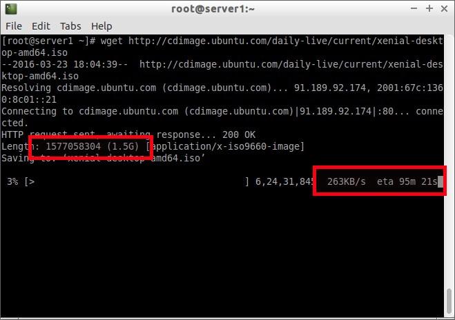 root@server1:~_002