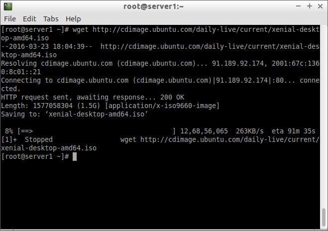 root@server1:~_005