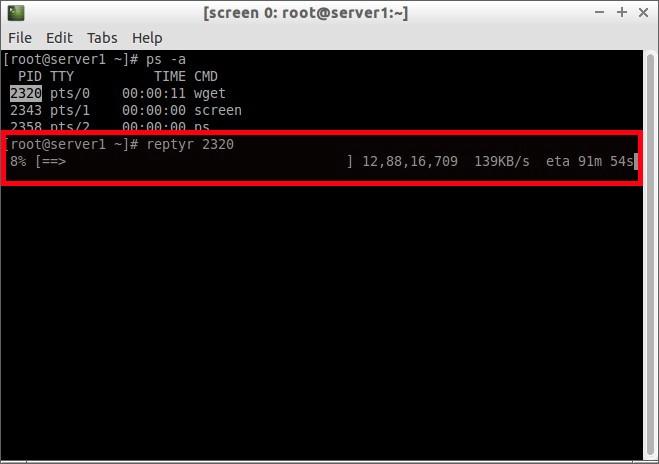 [screen 0: root@server1:~] _004
