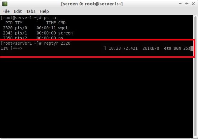 [screen 0: root@server1:~] _009