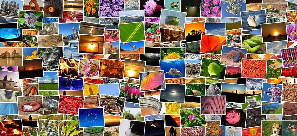 RipMe - Download Image Albums In Bulk From Popular Websites