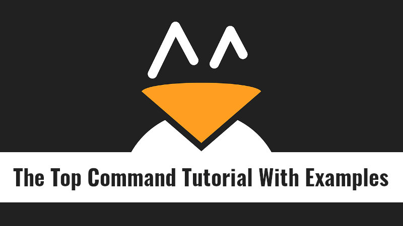 The Top Command Tutorial With Examples For Beginners